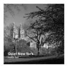 Quiet New York by Siobhan Wall